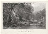 The Adirondack Woods Art Print