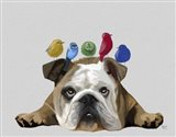 English Bulldog and Birds Art Print