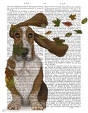Basset Hound Windswept and Interesting Art Print