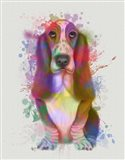Basset Hound Rainbow Splash Art Print