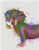 Dachshund And Glasses Rainbow Splash Art Print