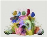 English Bulldog and Birds, Rainbow Splash Art Print