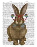 Rabbit and Flower Glasses Art Print
