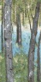 Deep Silence III Art Print