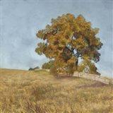 Autumn's Tranquility I Art Print