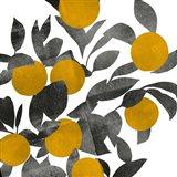Shadow Branch III Art Print