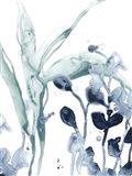 Blue Kelp I Art Print