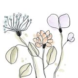Spindle Blossoms VIII Art Print