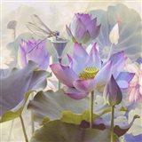 Lotus Sanctuary II Art Print