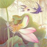 Lotus Sanctuary III Art Print
