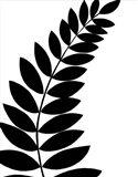 Leaf Silhouette I Art Print