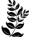Leaf Silhouette II Art Print