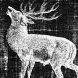Northwest Territory II Art Print
