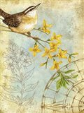 Songbird Sketchbook I Art Print