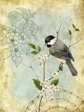 Songbird Sketchbook II Art Print