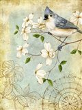 Songbird Sketchbook IV Art Print