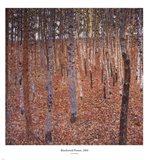 Beechwood Forest, c.1903 Art Print