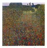 Field of Poppies, c.1907 Art Print
