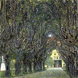 Avenue of Trees in the Park at Schloss Kammer, c.1912 Art Print
