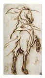 Study of a Rearing Horse Art Print