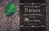 In all things of Nature Art Print