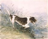 Dog Watching a Rat in the Water Art Print