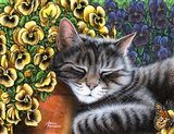 Afternoon Nap Horizontal Art Print