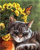 Afternoon Nap Art Print