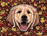 Autumn Fun Art Print