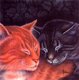 Nap Buddies Art Print