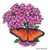 Queen Butterfly II Art Print