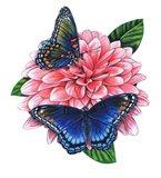 Red Spotted Purple Butterfly-II Art Print