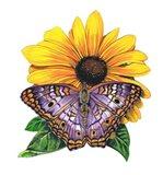White Peacock Butterfly-II Art Print