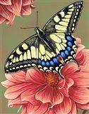 Yellow Swallowtail Butterfly Art Print