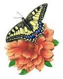 Yellow Swallowtail Butterfly II Art Print