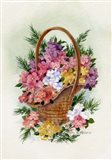 Basket Of Phlox Art Print