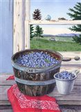 Blueberries And Red Bandana Art Print