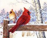 Cardinal Pair with Birch Art Print