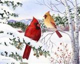 Cardinals And Hemlock Tree Art Print