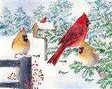 Cardinals In Snow Flurry Art Print