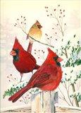 Cardinals In Winter Art Print