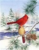 Cedar Farms Cardinals II Art Print
