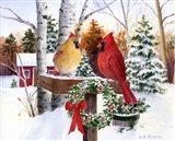 Christmas Cardinals Art Print