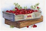 Cranberry Crates Art Print