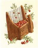 Cranberry Scoop Art Print