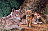 Wolf Den Art Print