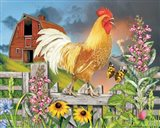 Yellow Rooster Greeting The Day Art Print