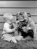 1950s 1960s Baby Sitting Playing With Bulldog Art Print