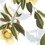 Lemon Floral Art Print