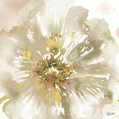 Neutral Watercolor Poppy Close Up I